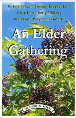 An Elder Gathering Ebook - Product Image